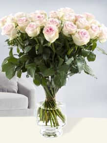 30 soft pink roses – Sweet Revival