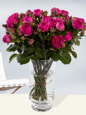 10, 20 or 30 wild bright pink roses