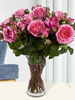 10, 20 or 30 wild pink roses