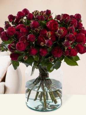 10, 20 or 30 wild red roses