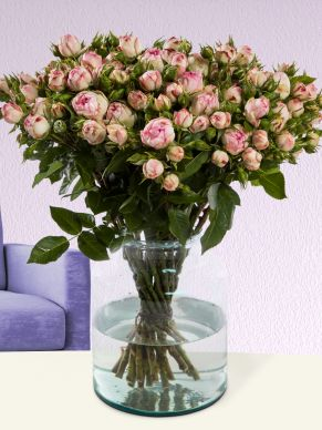 10, 20 or 30 wild soft pink roses