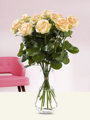10 salmon-coloured roses - Avalanche Peach