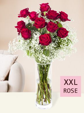 15 red roses with gypsophila (XXL)