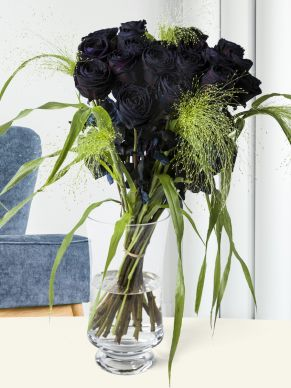 20 black roses with panicum