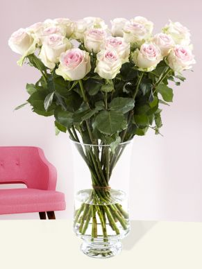 20 soft pink roses - Sweet Revival