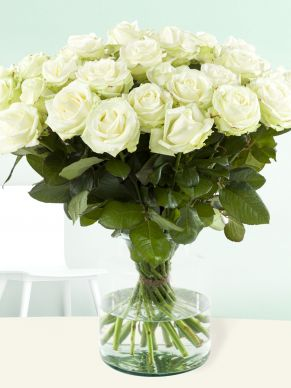 20 white roses - Avalanche