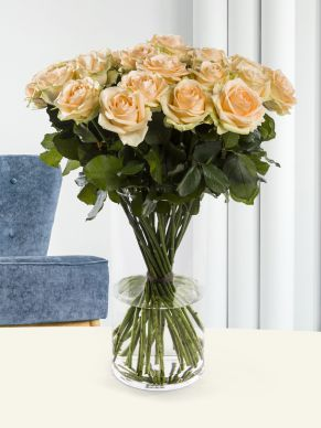 30 salmon-coloured roses - Avalanche Peach