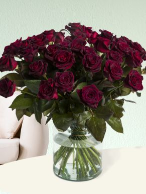 50 deep red roses - Black Baccara