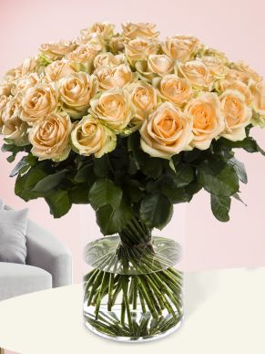 50 salmon-coloured roses - Avalanche Peach