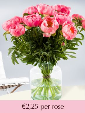 Salmon-coloured peonies - choose your number