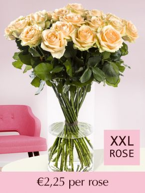 Salmon-coloured roses – choose your number