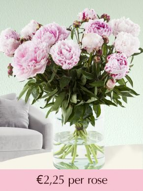 Soft pink peonies - choose your number