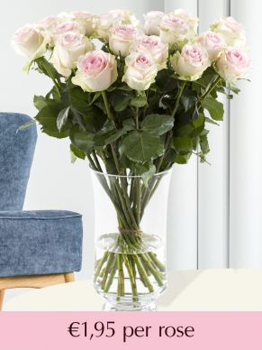 Soft pink roses – choose your number