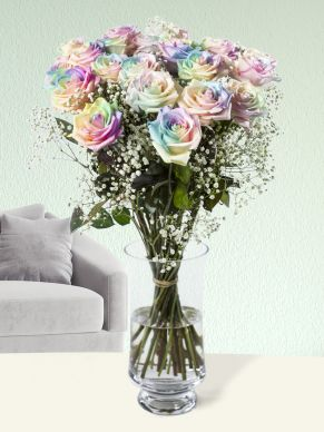 Rainbow roses pastel with gypsophila