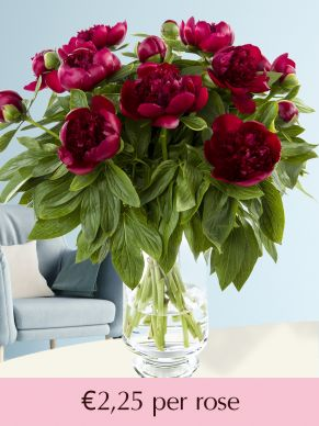 Red peonies - Choose your number