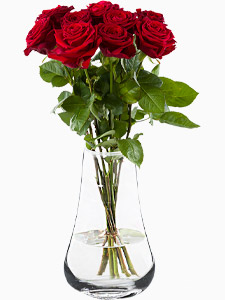 Order10 red roses