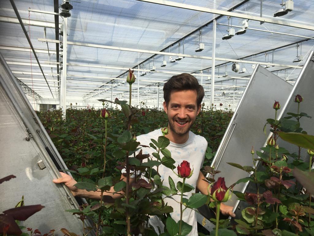Grower: Meewisse Roses