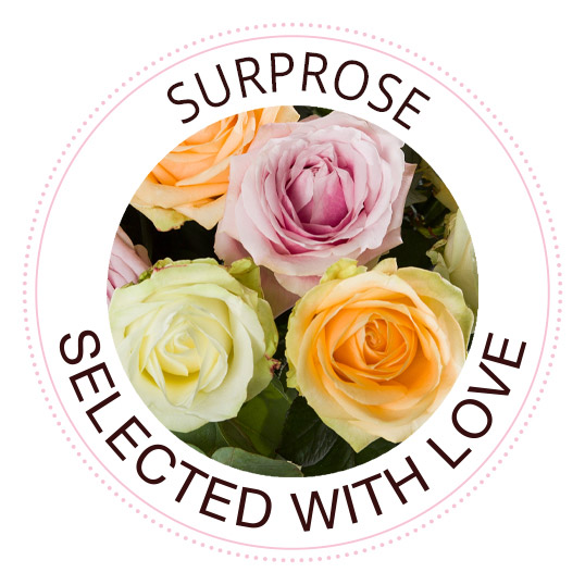 Send roses with Surprose