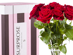 order 10 red roses