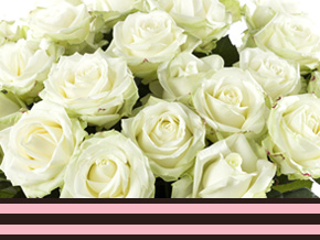 Order a large amount of roses
