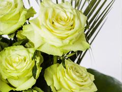 green rose bouquet