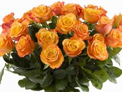 Orange rose bouquet