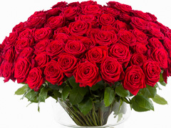 Red roses as a gift