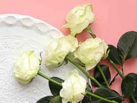 White rose deliveries