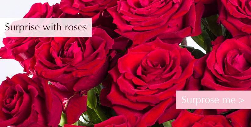 Order red roses online