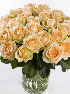 Deliver salmon colored roses